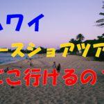ハワイに訪れたらここも!ノースショアツアーではどこへ行ける?