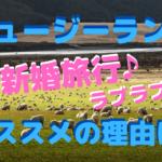ニュージーランドの大自然に癒される!新婚旅行にオススメの理由は??
