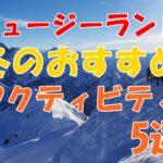 ニュージーランドの冬は雪降るの??冬のアクティビティ5選とは??