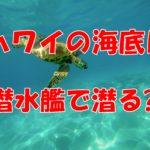 ハワイの海底で魚が見てみたい!!潜水艦で見に行けるツアーとは??