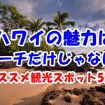 ハワイの観光スポット!ビーチ以外でもインスタ映えできる??