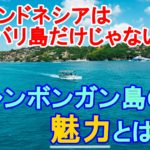 インドネシアはバリ島だけじゃない!!レンボンガン島の魅力とは?